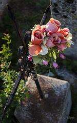 AULLENE-6 (philippemurtas) Tags: aullene village corse france maison habitation pierrre corsica house dwelling stone cimetiere tombe cemetery tomb