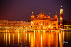 The Golden Temple (Riccardo Maria Mantero) Tags: gurudwara harmandirsahib mantero monument riccardomantero riccardomariamantero temple amritsar city cult gold india landmark punjab religion sikh travel exif:aperture=ƒ11 geocountry exif:make=nikoncorporation exif:model=nikond800 exif:isospeed=100 geostate exif:focallength=70mm geo:lat=3161995 geo:lon=74876563333333 geolocation geocity camera:model=nikond800 camera:make=nikoncorporation potd:country=it culture lights
