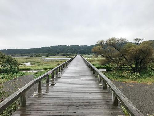 ちょっと寄り道して観光。 (@ 蓬萊橋 in 島田市, 静岡県)