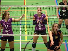 2B260536 (roel.ubels) Tags: vv utrecht eurosped galgewaard volleybal volleyball 18 finale nationale beker