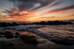 Sunset at the Breakwater (Kurt Lawson) Tags: batis breakwater california clouds fall ocean pacific reflection rocks seaweed sony sunset surfboard venice waves zeiss