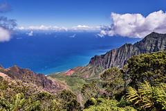 Na Pali Coast (AgarwalArun) Tags: sonya7m2 sonyilce7m2 hawaii kauai island landscape scenic nature views mountain fog clouds napalicoast pacificocean ocean water waves surf napali ruggedcoastline cliffs pu'uokilalookout