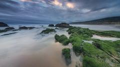 Green Carpet (João Cruz Santos) Tags: seascape crismina beach cascais pnsc bluehour portugal longexposure fotodiox wonderpana sigma1224