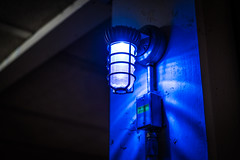 Blue Light (Evan's Life Through The Lens) Tags: camera sony a7rii lens glass 50mm f18 fe af beautiful color vibrant blue orange bright light day girlfriend amazing cold autumn 2016
