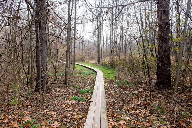 Eagle Creek Park - November 14, 2016