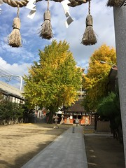 (eyawlk60) Tags:            jinja shrine honden haiden autumn latefall bluesky torii japan komainu shimenawa iphone