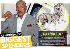 Eye Of The Tiger By Have You Heard - WWW.HYH.NG (haveyouheardhg) Tags: entertainment nigeria