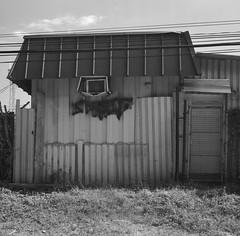 Shack Back (geowelch) Tags: thejunction toronto industrialarchitecture commercialbuildings blackandwhite newtopographics urbanfragments urbanlandscape 120 film 6x6 mediumformat kodakportra400bw c41 epsonperfection4870photo yashicamat