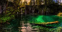 Transparencias II (Stilnados) Tags: plitvice lakes croacia esmeralda nationalpark nature