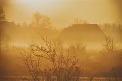 dawn (Smo_Q - As long as you remember me, I'll never ..) Tags: poland pentaxk3ii dawn mist