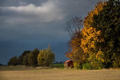Dark Sky on the Countryside