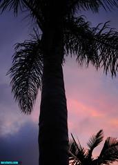 SunsetAtHome (mcshots) Tags: usa california socal losangelescounty summer sunset coast sky clouds hot humid evening sun 2015 stock mcshots