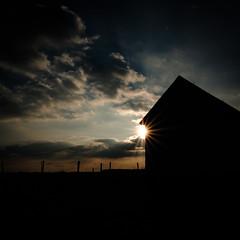 2016 10 29 - Sunset-4 (OliGlo1979) Tags: fuji luxembourg xt2 xf1655 landscape sunset horse silhouette
