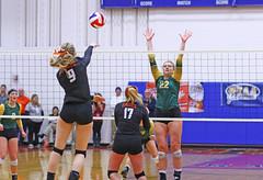 IMG_6890 (SJH Foto) Tags: girls volleyball high school allentown central catholic somerset team teen teenager net battle spike block action shot jump midair