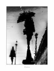 Paris n°93 - Pluie (Nico Geerlings) Tags: paris parijs france reflection rain rainy raining pont brigde pontlouisphilippe umbrella ngimages nicogeerlings nicogeerlingsphotography leicammonochrom 50mm summilux