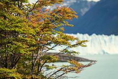Santa Cruz (cuiti78) Tags: santa cruz argentina glaciar perito moreno