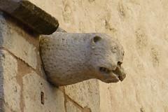 20151029 - Martigues Bouches-du-Rhne -042 (anhndee) Tags: bouchesdurhne martigues glise eglise church gargoyle gargouille gargouilles