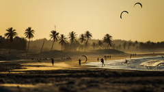 BEACH SCENE (CUMBUGO) Tags: beach sun sunset sand ocean brazil sea people kite surf sport action nikkor 300mm f28 nikon d800 d800e light color sunlight wave palm tree mood atmosphere