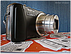 Lumix TZ27 (Simone Weil) Tags: stilllife lumix photography belfast panasonic northernireland ulster lecia northbelfast belfastphotography