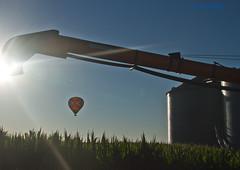 Follow The Sun (jackalope22) Tags: balloons inflight air