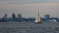 IMG_2719 (ruukivi) Tags: sunset sea sun water port tallinn estonia raw sailing yacht meri tallin vesi sadam eesti pirita purjetamine jaht pikseloojang