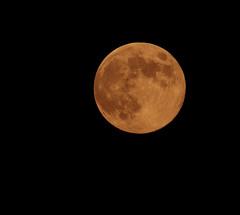 Blue Moon — also the Full Sturgeon Moon, the Full Red Moon, the Green Corn Moon and the Grain Moon. (keldar44) Tags: moon canon400mmf56 canoneos7d canon14xefextenderiii