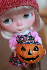 205-365 Pumpkin treat!