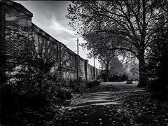ST PANCRAS CHURCHYARD 4 (Nigel Bewley) Tags: uk november autumn england blackandwhite london fall blackwhite victorian churchyard stpancras londonist stpancraschurch creativephotography unlimitedphotos november2013 canong1x