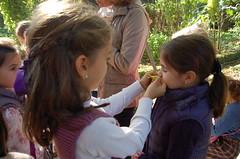 orvalle-2Prim-jardinbotanico (17)