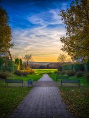 path. (angsthase.) Tags: autumn light green fall field leaves germany deutschland licht nrw grün blätter ruhrgebiet dortmund ruhrpott mft 2013 micro43 lumixg20f17 epl5 olympuspenepl5