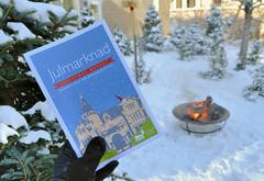 Julmarknad 2013 (jpellgen (@1179_jp)) Tags: christmas usa snow cold minnesota america fire nikon midwest holidays december sweden minneapolis swedish nordic 1855mm twincities nikkor mn scandinavian asi julmarknad 2013 americanswedishinstitute d5100 swanturnblad