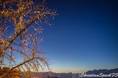 Sunrise in the Alps (christian speck) Tags: morning winter sky sunrise 35mm stars schweiz switzerland suisse sony hiver lausanne ciel nightsky leverdusoleil rx1