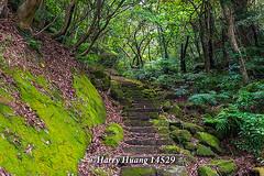 Harry_14529,土城,天上山步道,日月洞步道,日月洞,登山步道,步道,新北市,土城區,土城