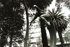 Sculpture (Ara Toledo) Tags: street summer blackandwhite sculpture nature mxico photo amazing day sunnyday condesa mexicanart mexicanculture amoralarte