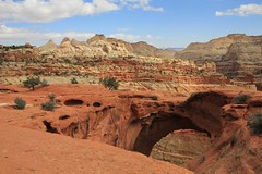 Cassidy Arch, Capitol Reef National Park (fly flipper) Tags: arch capitolreefnationalpark cassidyarch fryingpantrail hikingutah cassidyarchtrail cohabtrail