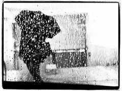 Parapluie (Clémence GRINCOURT de FLOGNY) Tags: city blackandwhite bw black paris rain night europe cityscape nightshot capital pluie nightlight nights blanc parisian nignt 2014 europeen blackandwhitepictures