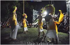 Sang Hyang Dedari (Bali Based Freelance Photographer and Photo Stocks) Tags: life people bali nature beauty canon indonesia eos photo foto stock culture daily cultural alam budaya balinese culturalevent myudistira madeyudistira myudistiraphotography