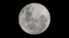 Super luna (tincho.uy) Tags: