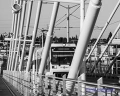 MAX Orange Line in Black & White on the Tilikum Crossing (AvgeekJoe) Tags: bw blackwhite blackandwhite bridgeofthepeople d5300 dslr lightrail max maxorangeline nikon nikond5300 oregon portland tilikumcrossing tilikumcrossingbridgeofthepeople train trimet willametteriver bridge cablestayedbridge masstransit masstransportation publictransit publictransportation rail transit transitbridge urbanrail
