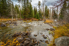 Lake Creek (scepdoll) Tags: phelpslake grandtetonnationalpark wyoming lakecreek aurancesrockefellerpreserve