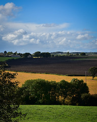 Colours of Autumn (littlestschnauzer) Tags: emley village rural countryside farms farming agriculure agricultural fields autumn autumnal green golden farmland uk england yorkshire skies blue sky days sunshine fall september 2016 view pastures west nikon d7200