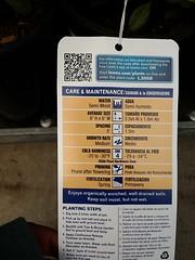 20160321_145010 (pbinder) Tags: 2016 201603 20160321 march mar monday mon kansas city missouri kansascity kansascitymissouri kc mo kcmo lowes plants tags