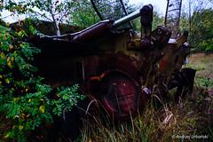 DSC_1601 (andrzej56urbanski) Tags: chernobyl czaes ukraine pripyat prypeć kyivskaoblast ua