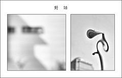 F_DSC5659-BW_DSC5562-1-BW-組合-Nikon D300S-Nikkor 16-85mm-May Lee 廖藹淳 (May-margy) Tags: maymargy bw 黑白 組合 組合對話dislogue 臉譜 facesinplaces 街燈 streetlamp 金屬 metal 反射 reflection 建築 buildings 窗 windows 門 door 樹木 tree 天馬行空鏡頭的異想世界 mylensandmyimagination 線條造型與光影 linesformandlightandshadows 街拍 streetviewphotographytaiwan 新象意象與影像 naturalcoincidencethrumylens 模糊 blur 散景 bokeh 剪影 silhouette 台北市 台灣 中華民國 taiwan repofchina fdsc5659bwdsc55621bw組合 你說的算 taipeicity nikond300s nikkor1685mm maylee廖藹淳