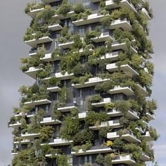 Huisje boompje beestje (Tim Boric) Tags: woontoren flatgebouw groen bomen struiken balkon housing highrise building greenspace tree milaan milan milano