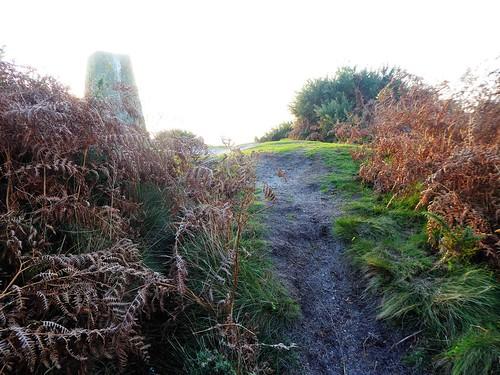 18342 Blacknoll Hill a