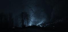 Searchlights (Kristian Francke) Tags: landscape night search searchlights forest mountain strange light tree trees path pentax tamron bc canada british columbia pitt lake