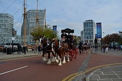 entering the Albert Dock (napoleon666uk) Tags: liverpool international horse festival liverpoolinternationalhorsefestival horseshow echoarena animal parade