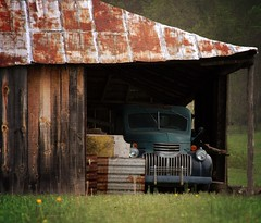 Odd cow (ariel is . . .) Tags: virginia chevroletionlyknowthisbcitwasbranded 1940s oldchevy pickuptruck parked barn rusty southcentralva tinroof