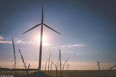 Eole et Hlios (Quentin Douchet) Tags: alsacechampagneardennelorraine aube france parcolien renewableenergy seinerivegauchenord windfarm campagne countryside enr parceolienseinerivegauchenord soleil sun windturbine nergierenouvelable olienne nergie energy